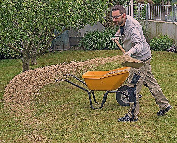 Photo of Moos im Rasen erfolgreich bekämpfen