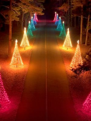 Callaway Gardens Christmas Lights.Fantasy In Lights Callaway Gardens Gardening Christmas