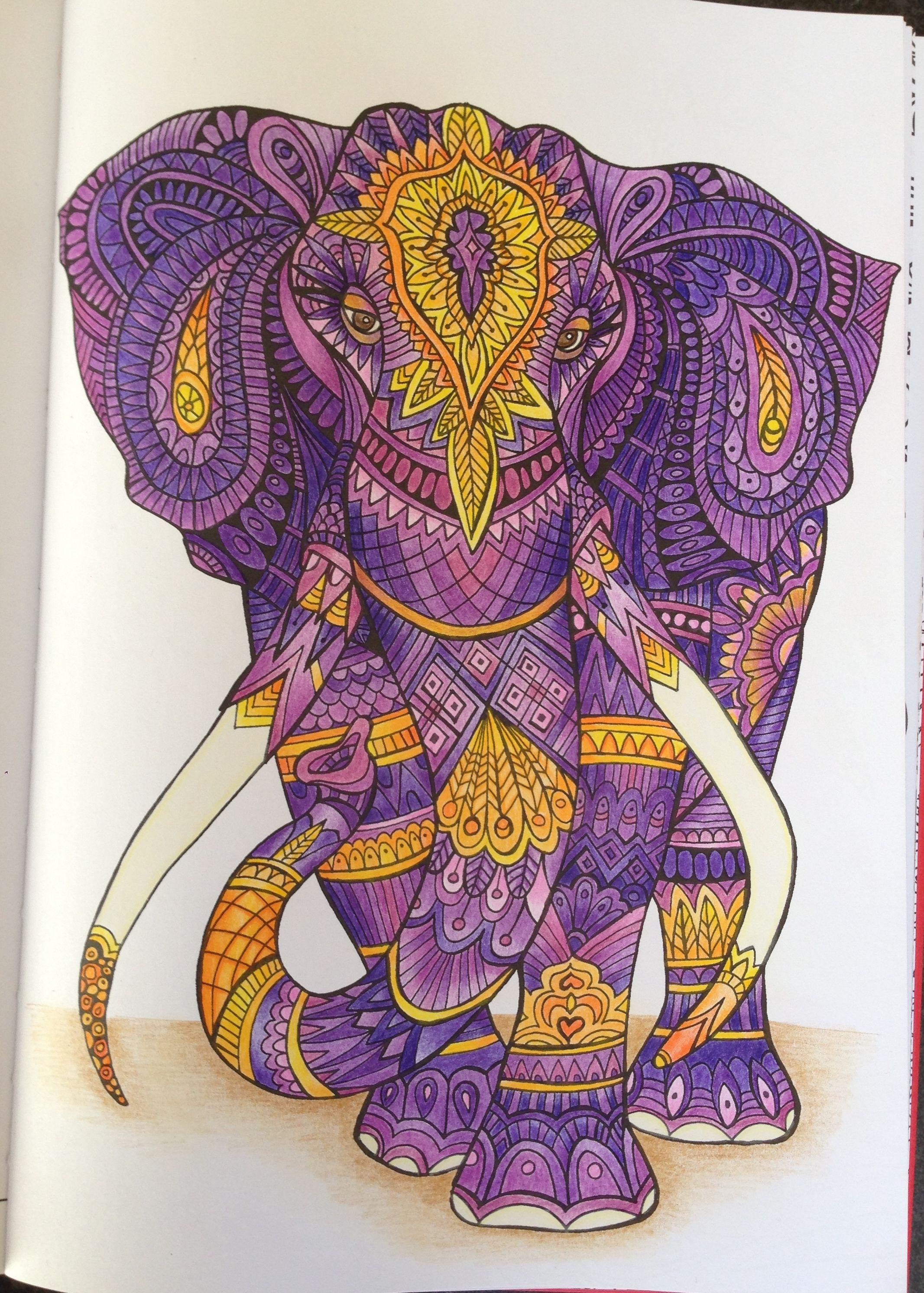 Livre Bestiaire Extraordinaire Crayons De Couleurs Polychromos Et Prismacolor Elephant Drawing Elephant Art Elephant Painting