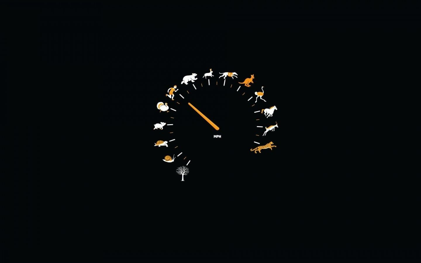 Zodiac Animals Illustration Humor Speedometer Minimalism 720p Wallpaper Hdwallpaper Desktop In 2020 Minimalist Wallpaper Funny Wallpaper Minimal Wallpaper