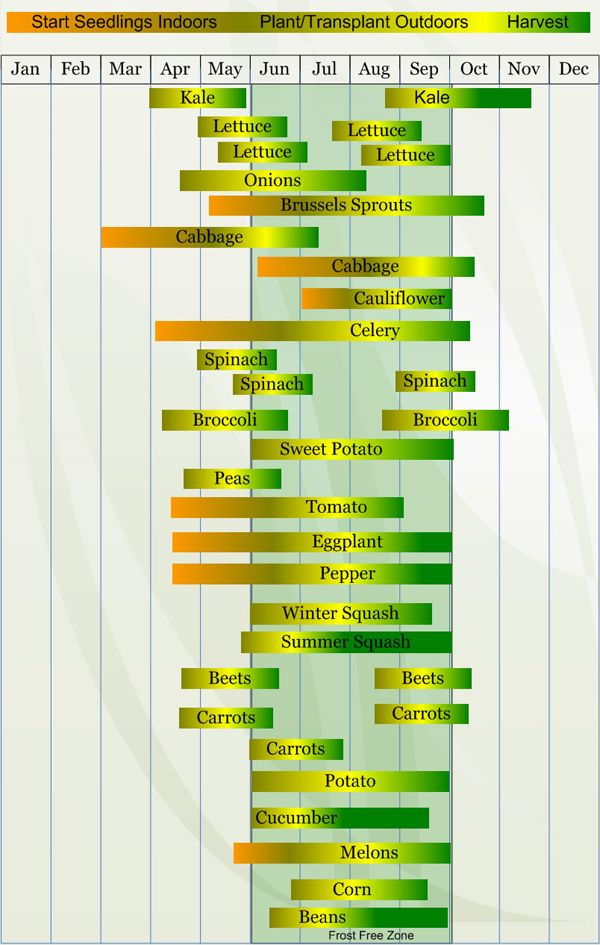 This chart is for zone only the site does have charts different zones areas vegetable planting calendar describing approximate dates to start also best gardening stuff images on pinterest rh