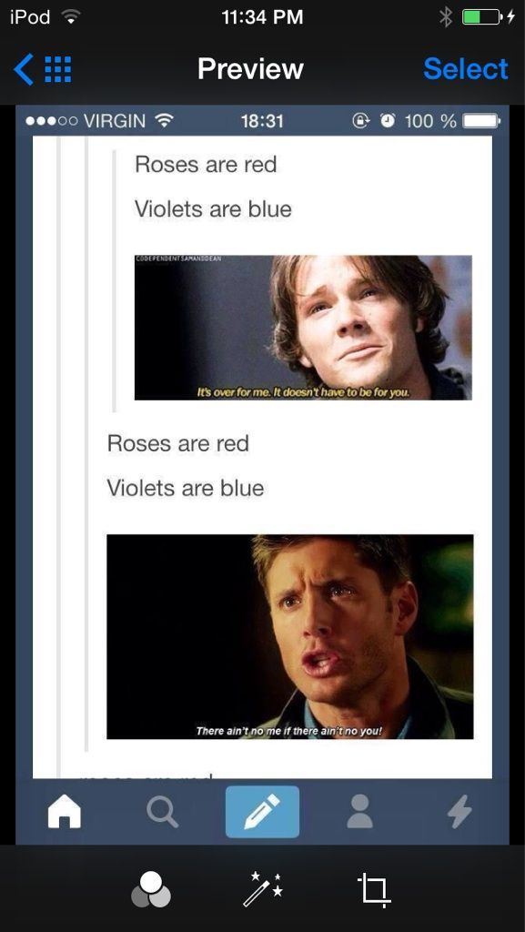 Roses are red violets are blue... - Imgur