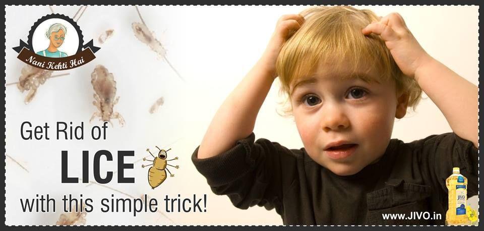 0eec372dd8bb6b25bc8dd696d832010b - How To Get Rid Of Lice With White Vinegar