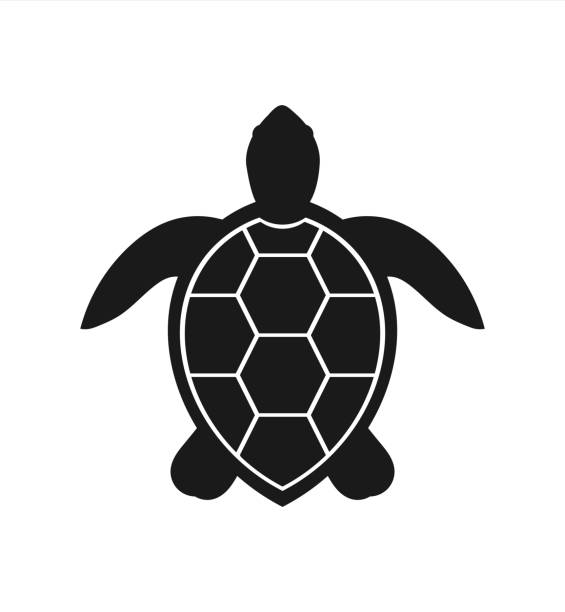 Pin By Oliver Schnitzer On Baby Shower Hawaiian Luau Turtle Outline Turtle Drawing Turtle Silhouette