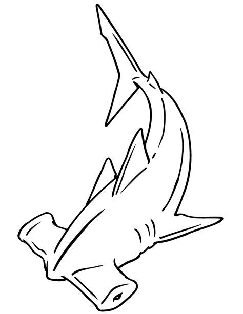 Hammerhead Shark Coloring Page Shark Coloring Pages Shark Drawing Shark Art