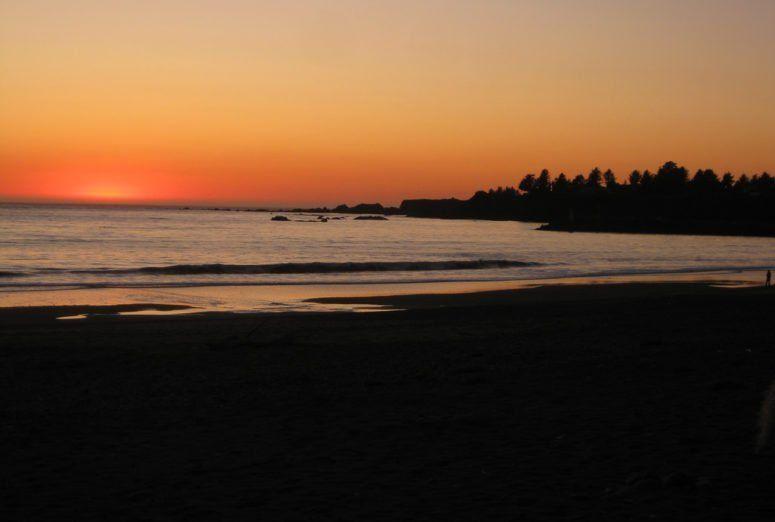 14 Stops to Make on an Oregon Coast Road Trip #westcoastroadtrip