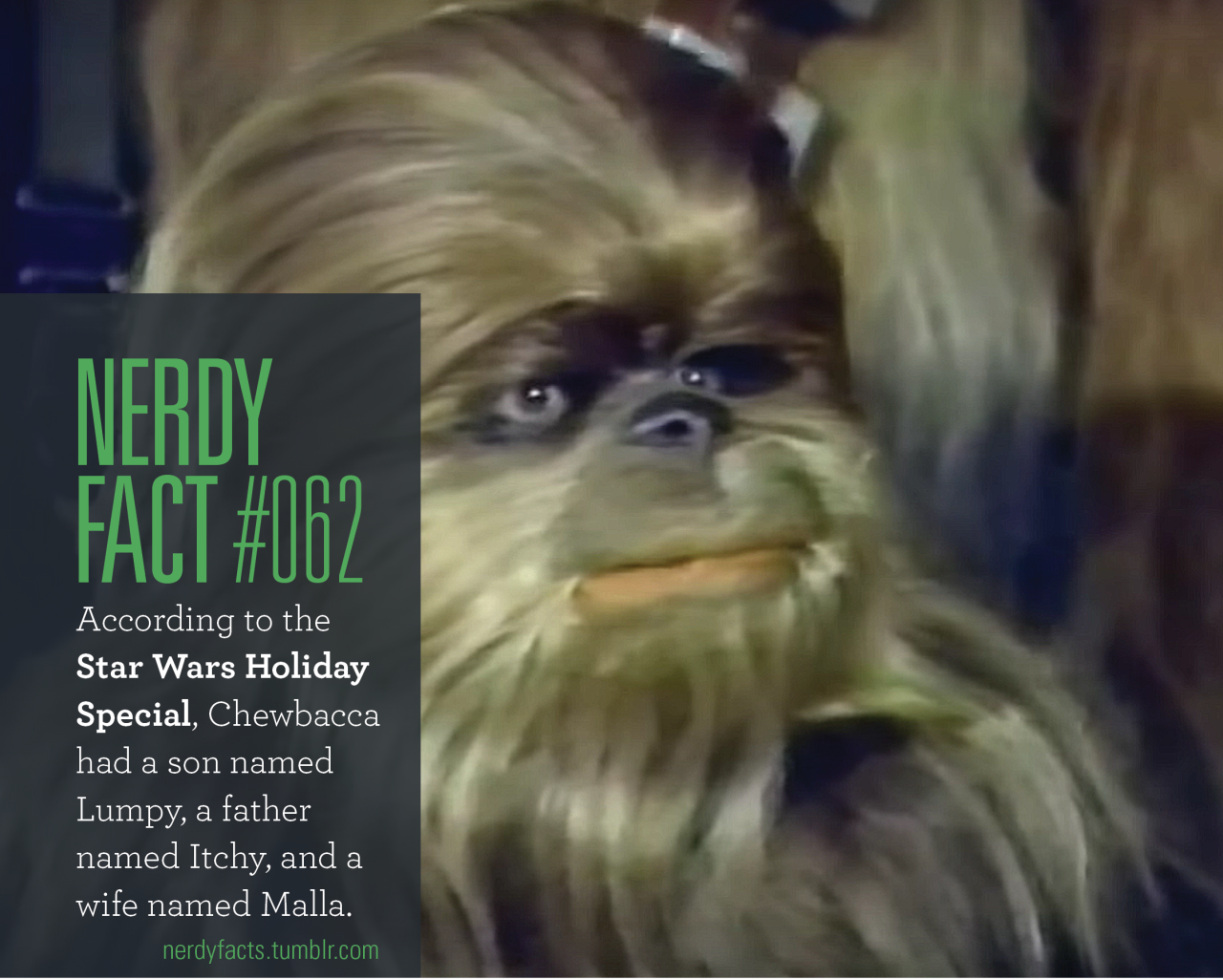 Star Wars Memes Star Wars Holiday Special Weird Facts