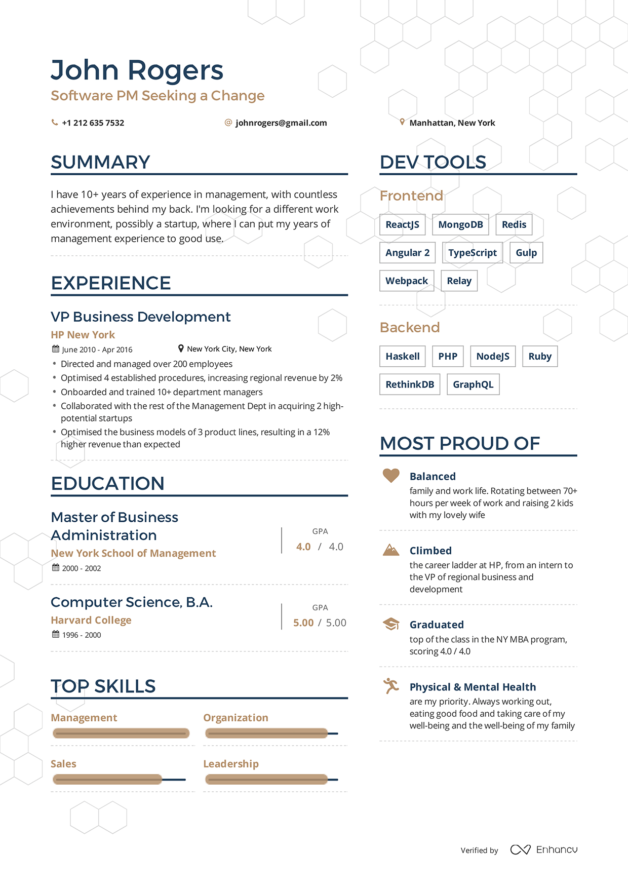 Examples Of Resumes By Enhancv  Projects To Try