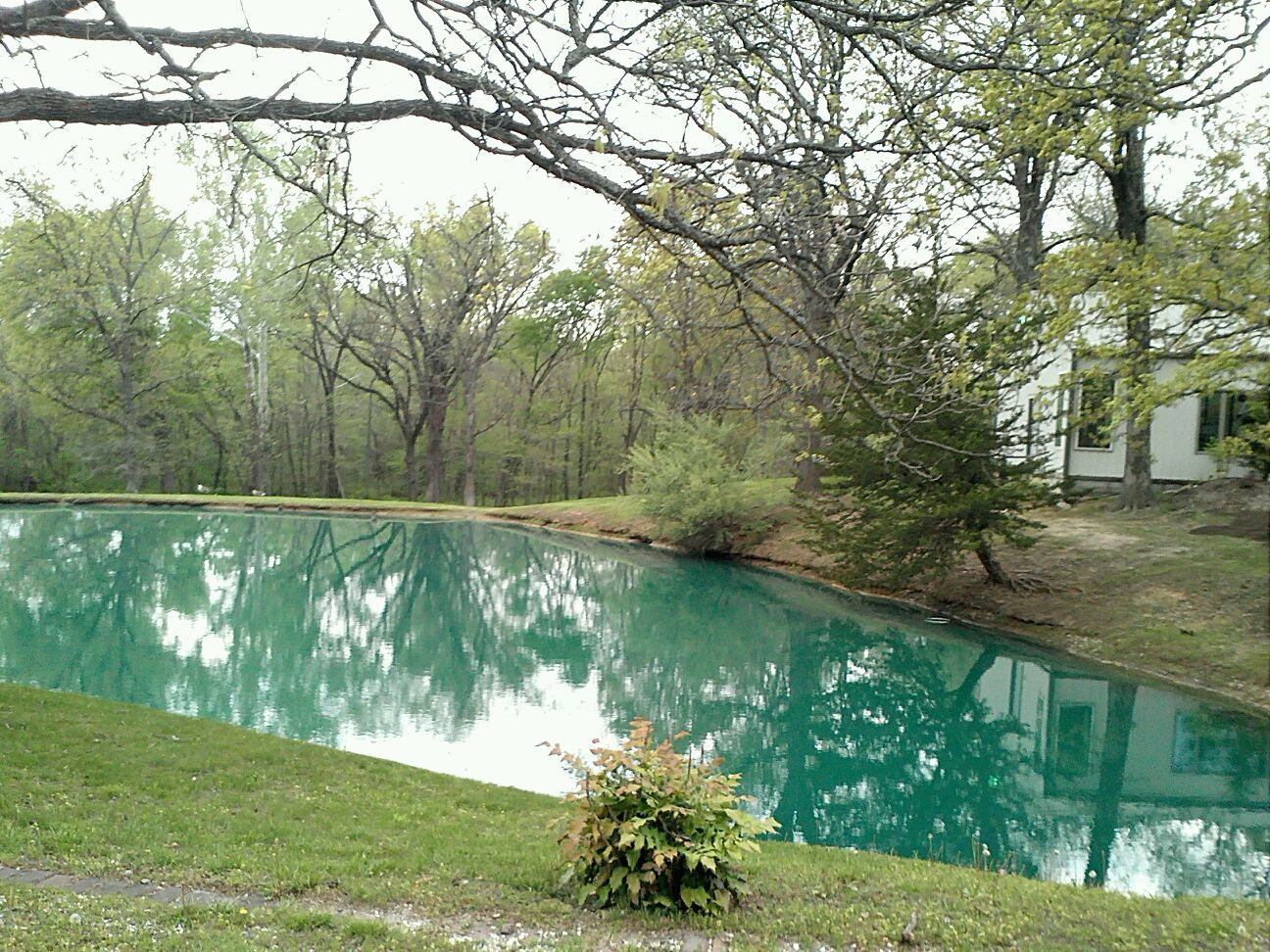 The pond on the property, a great photo opportunity.