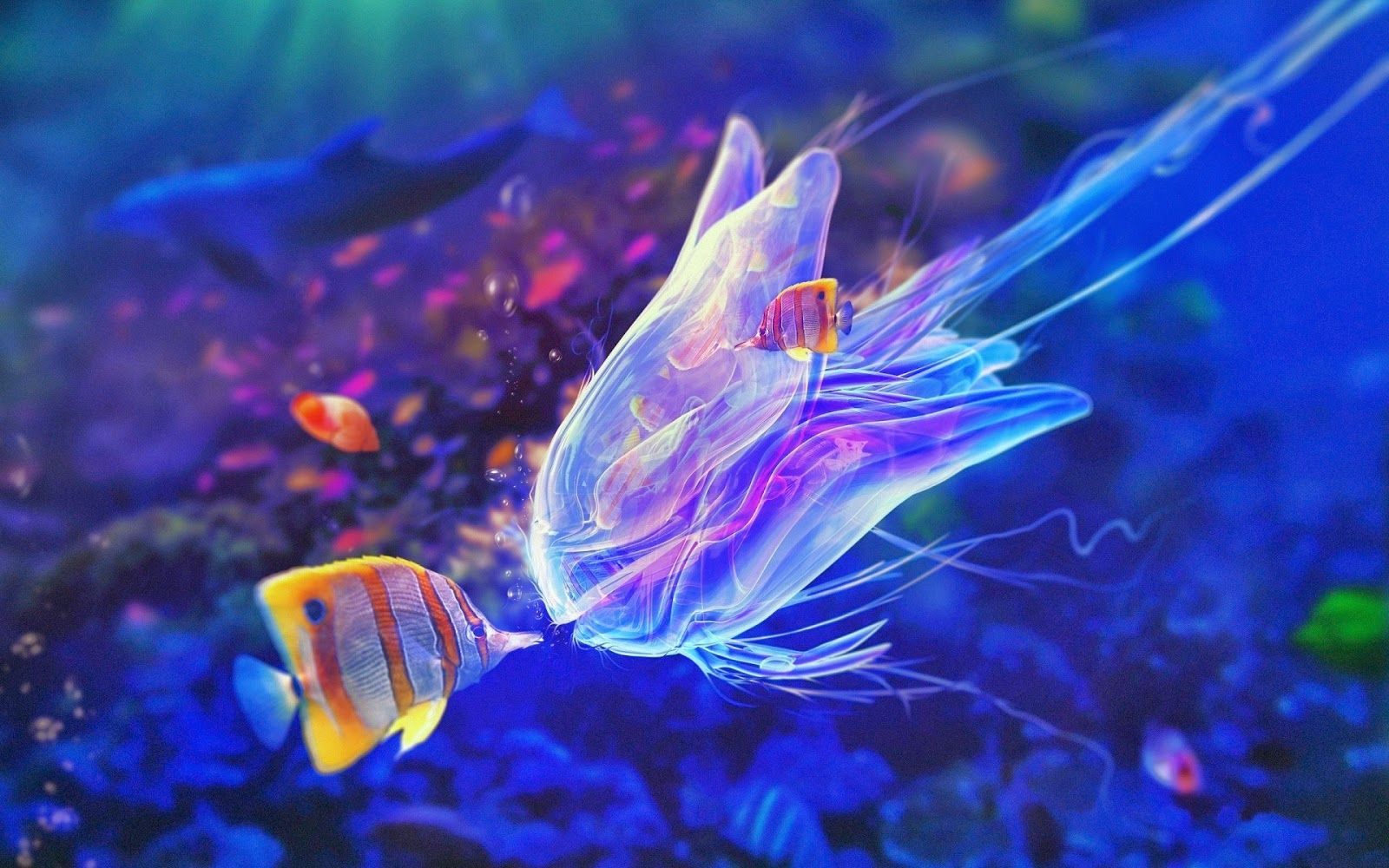 Pin On Colourful Underwater