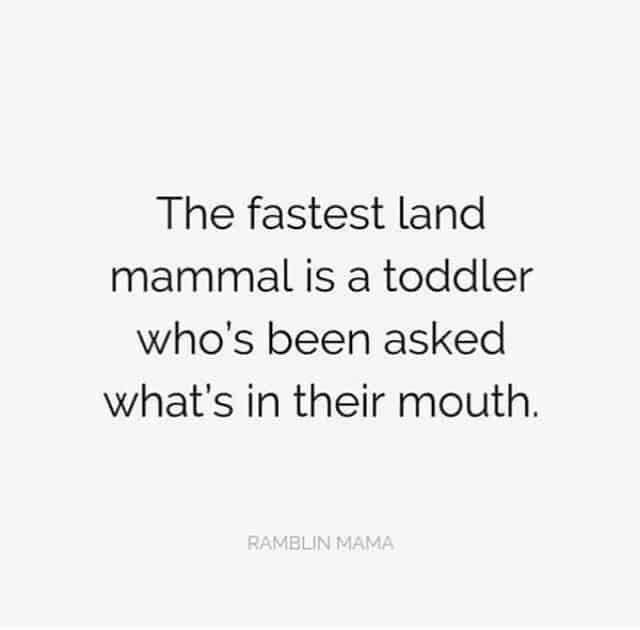 Best Mom Memes + Funny Parenting - Family Food Garden