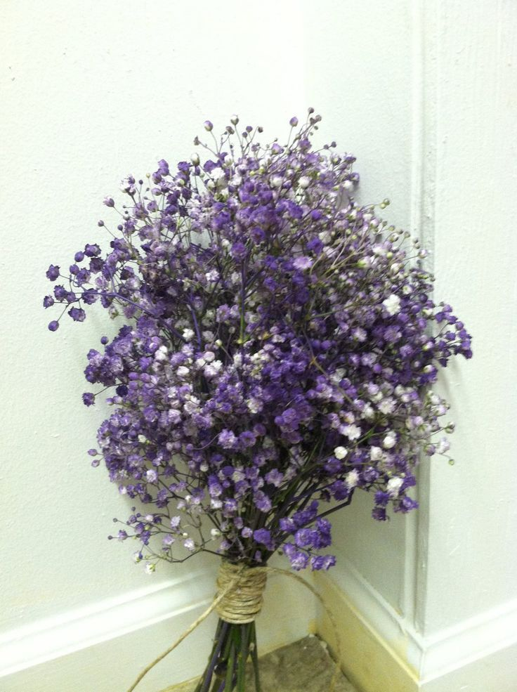 Purple baby s breath babies bouquet