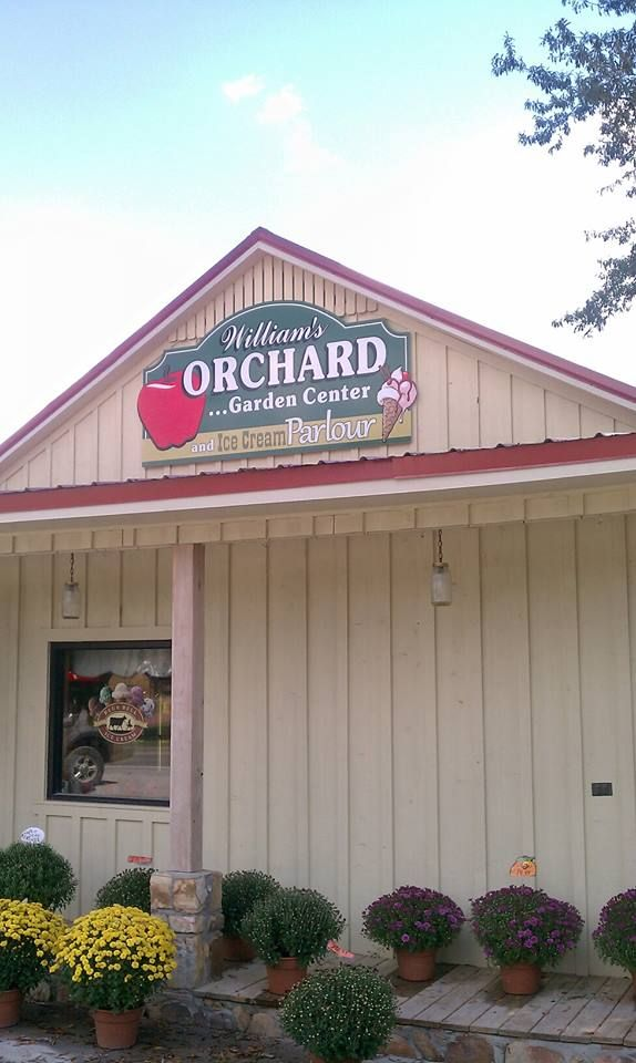 William S Orchard And Nursery On Us Hwy 11 In Argo Al Has Fresh Fruits Vegetables As Well Lovely Plants Spring Pumpkinums Autumn