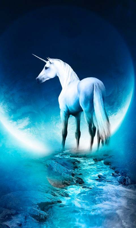 Unicorn Xp Android Wallpapers Htc T Mobile G2 G1 Wallpapers Free Download Unicorn Wallpaper Horse Wallpaper Fantasy Horses