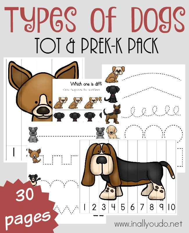 Types of Dogs Tot & PreK-K Pack - In All You Do
