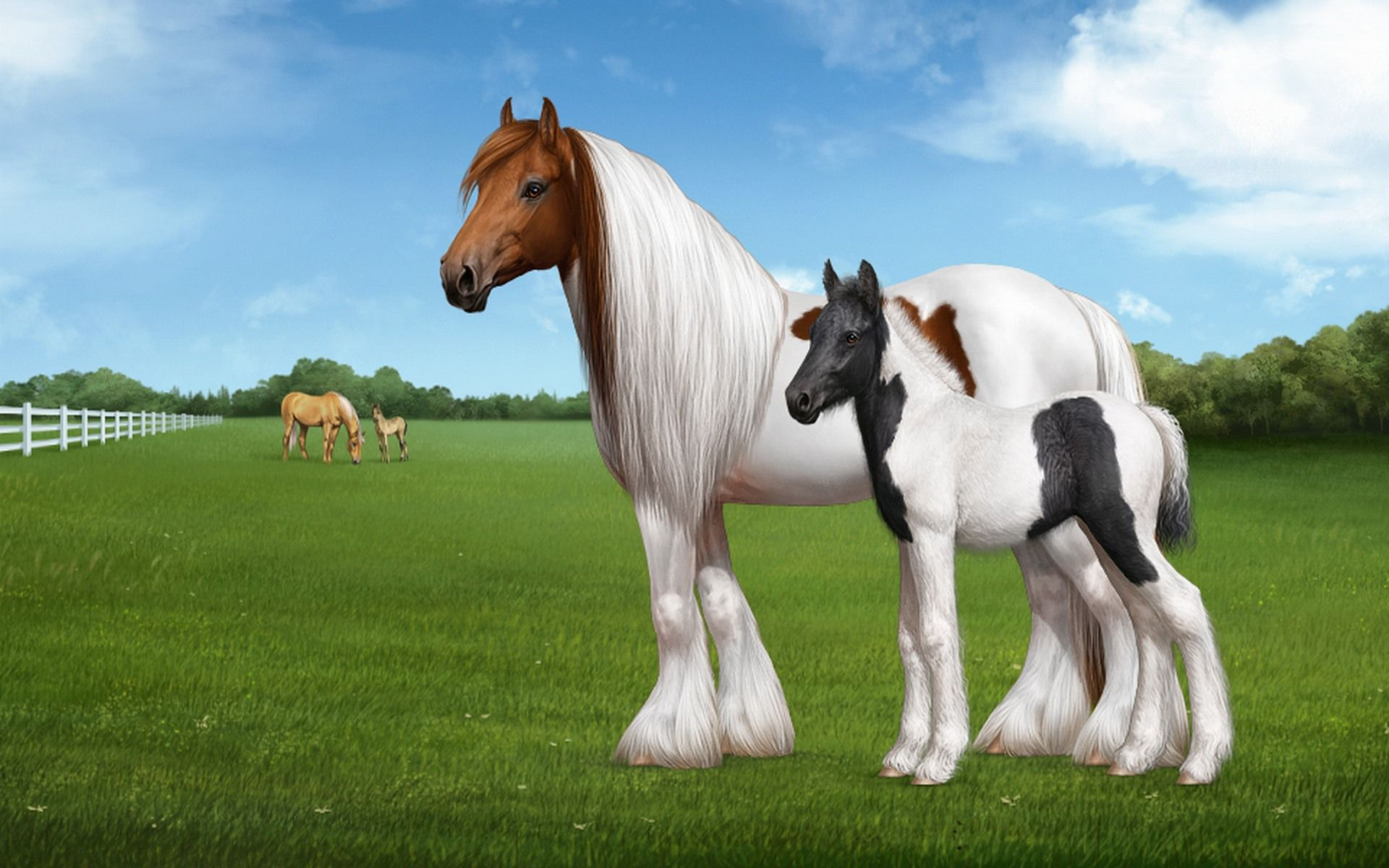 explore free horses wild horses and more youwall white horse wallpaper wallpaperwallpapersfree