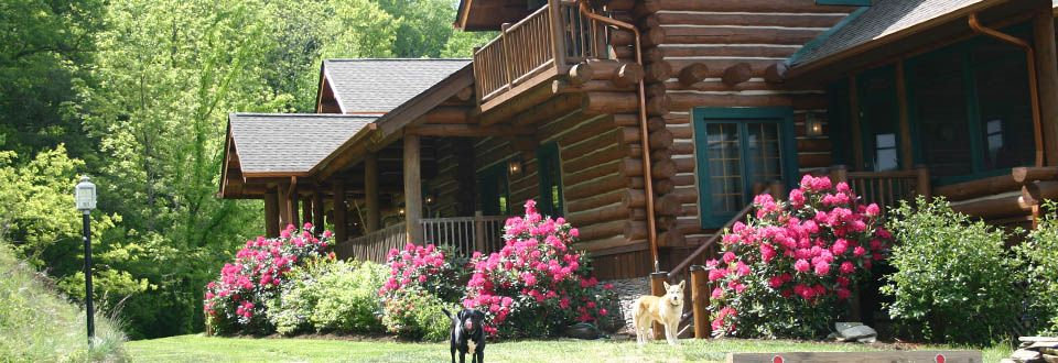 Photos Of Wildberry Lodge Bed Breakfast Lodges House