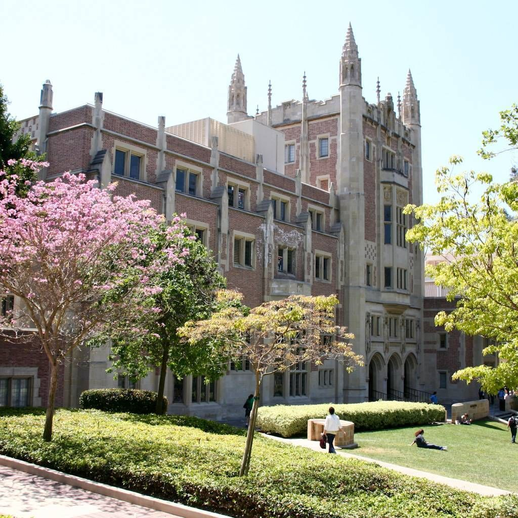 UCLA Anderson Essay Analysis            Pinterest