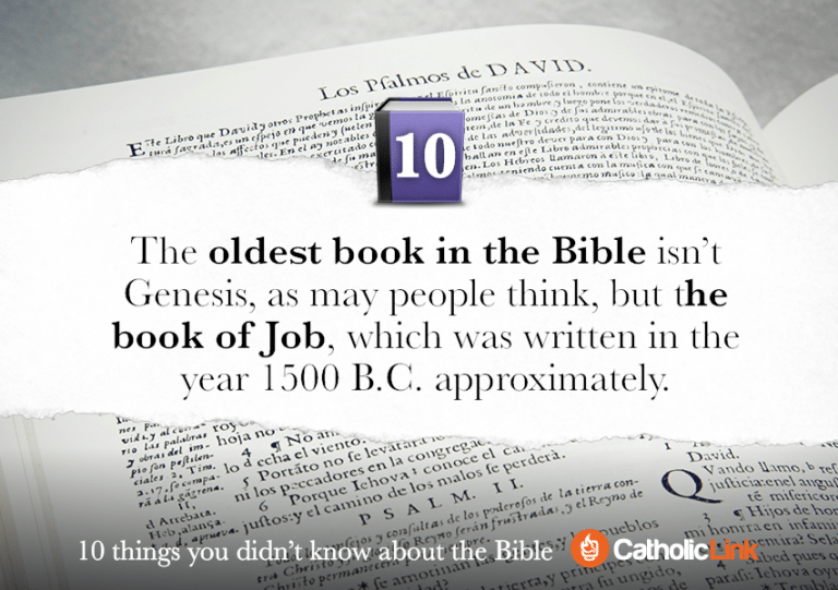 Gallery 10 things you didn't know about the Bible Bible