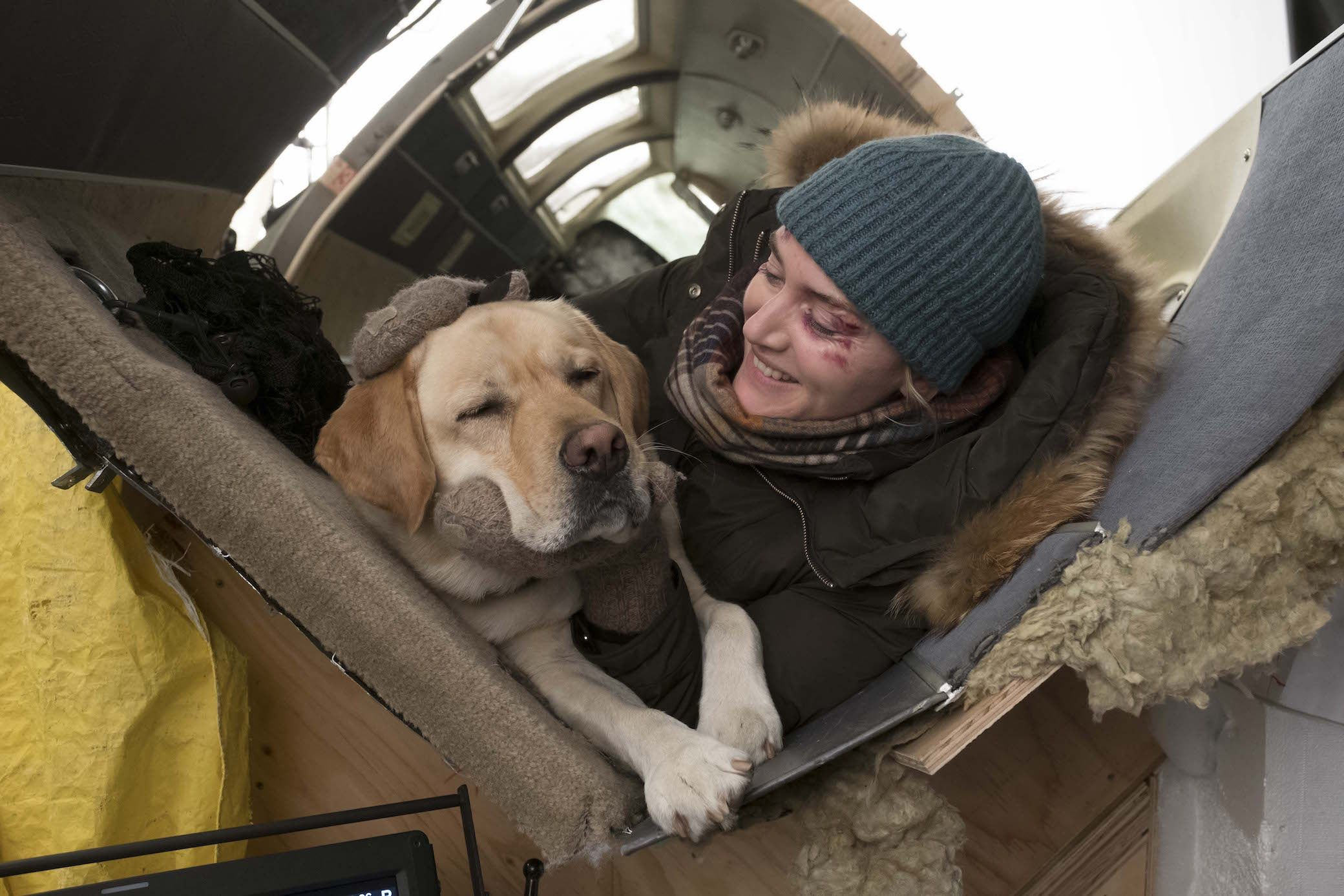 Nothing Like A Man S Best Friend The Mountainbetweenus Arrives On Blu Ray Dvd And Vod December 26 Blu Ray Blu White Top And Blue Jeans