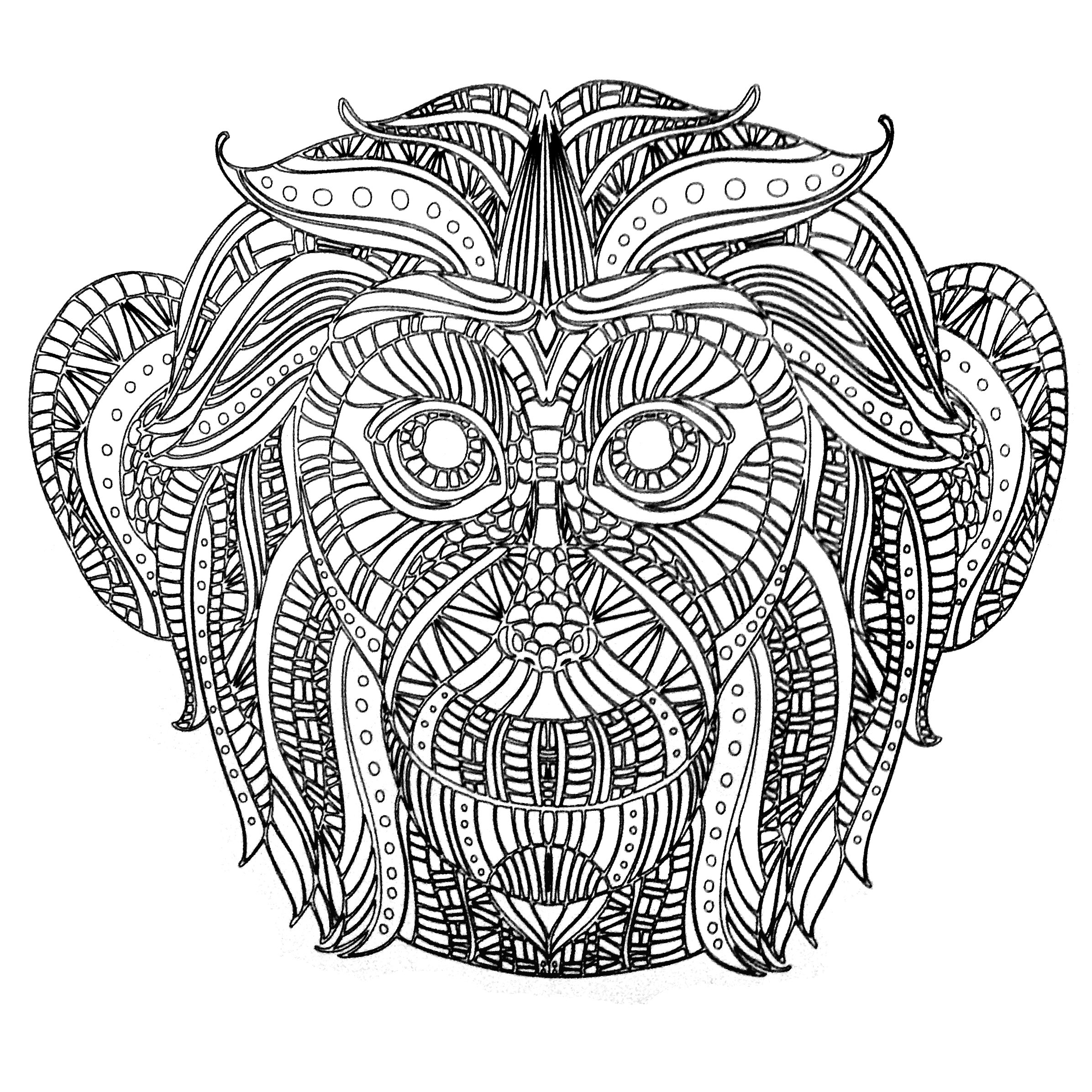 Colors of Nature Adult Colouring Book - Monkey   Cool ...