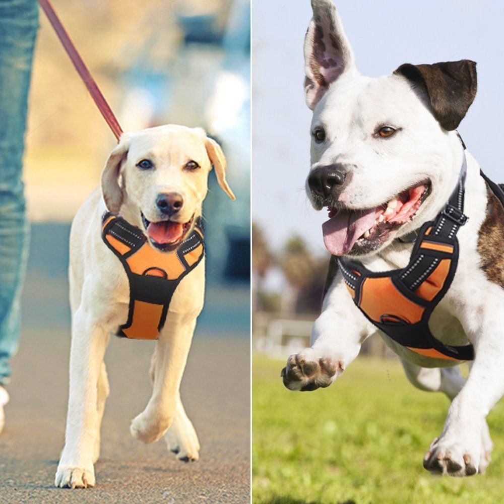 Eagloo No Pull Dog Harness With Front Clip Walking Pet Harness