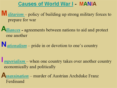 Journal 57 Cause Of World War I Essay Outline The First
