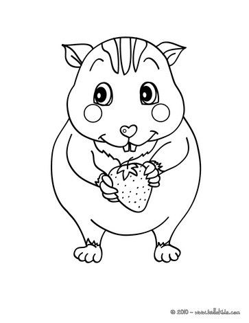 Beautiful Kawaii Hamster Coloring Page For Kids Of All