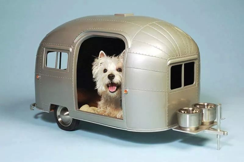Check Out These Super Realistic Pet Trailers. You'll