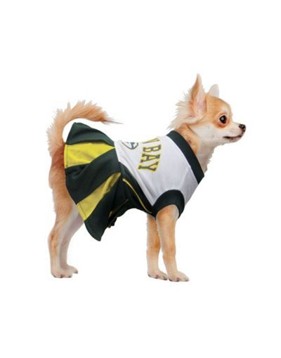 f1fccb675 Green Bay Packers NFL Dog Cheerleader Costume - Party City