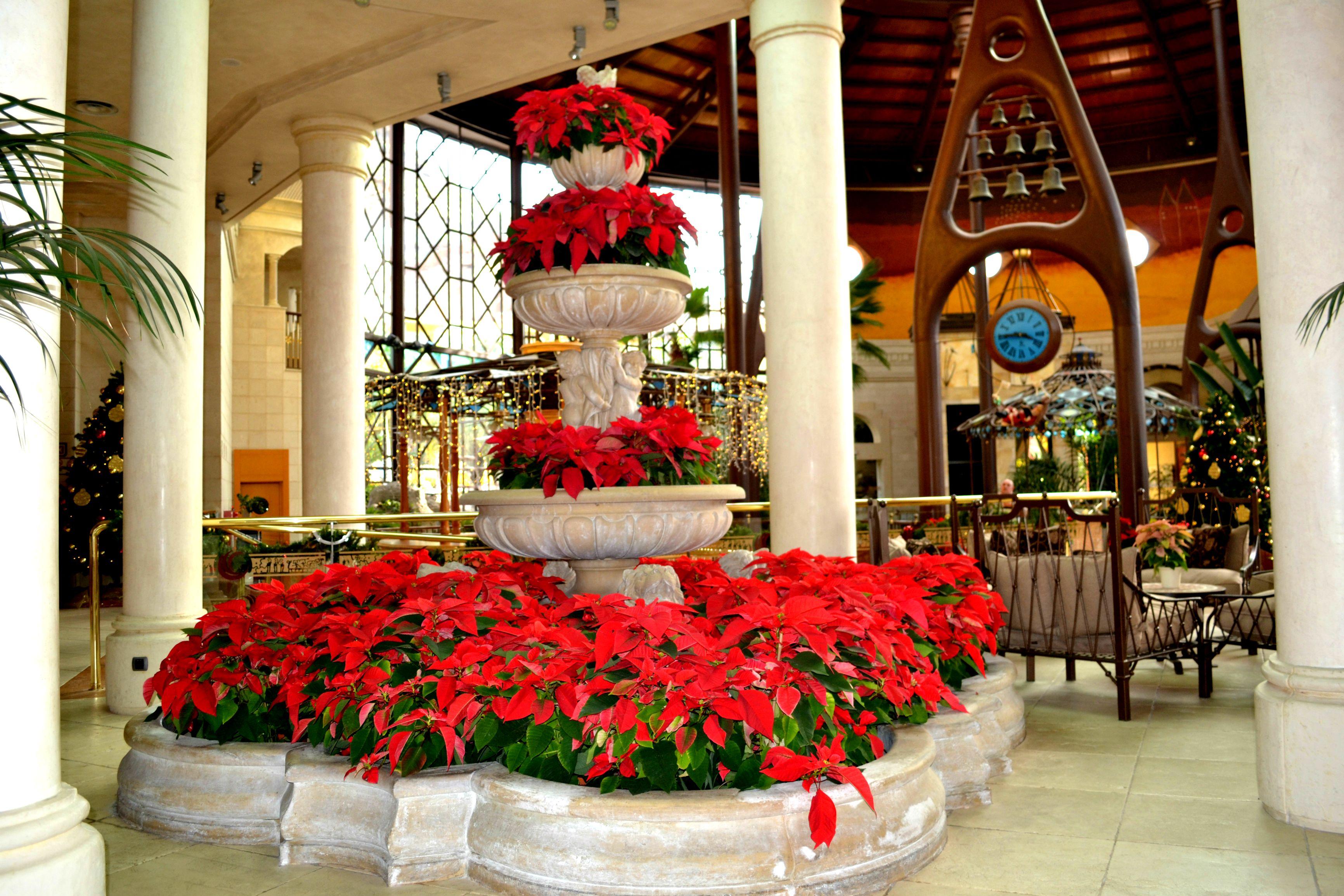 Beautiful Christmas at #CordialMoganPlaya!