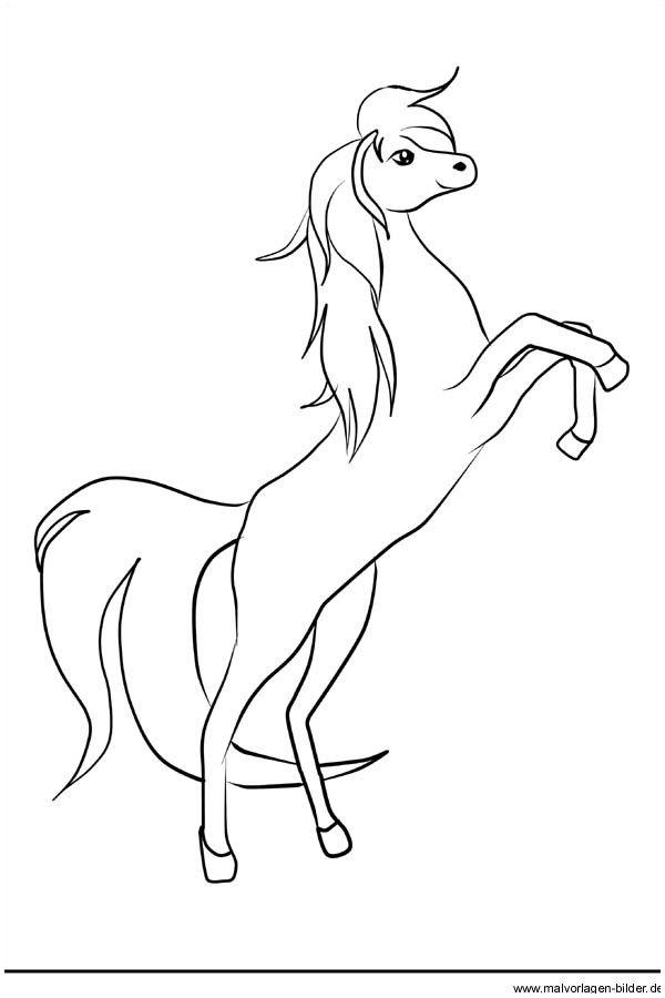 Pferd Vorlage Zum Ausdrucken Druckfertig Of Pferd