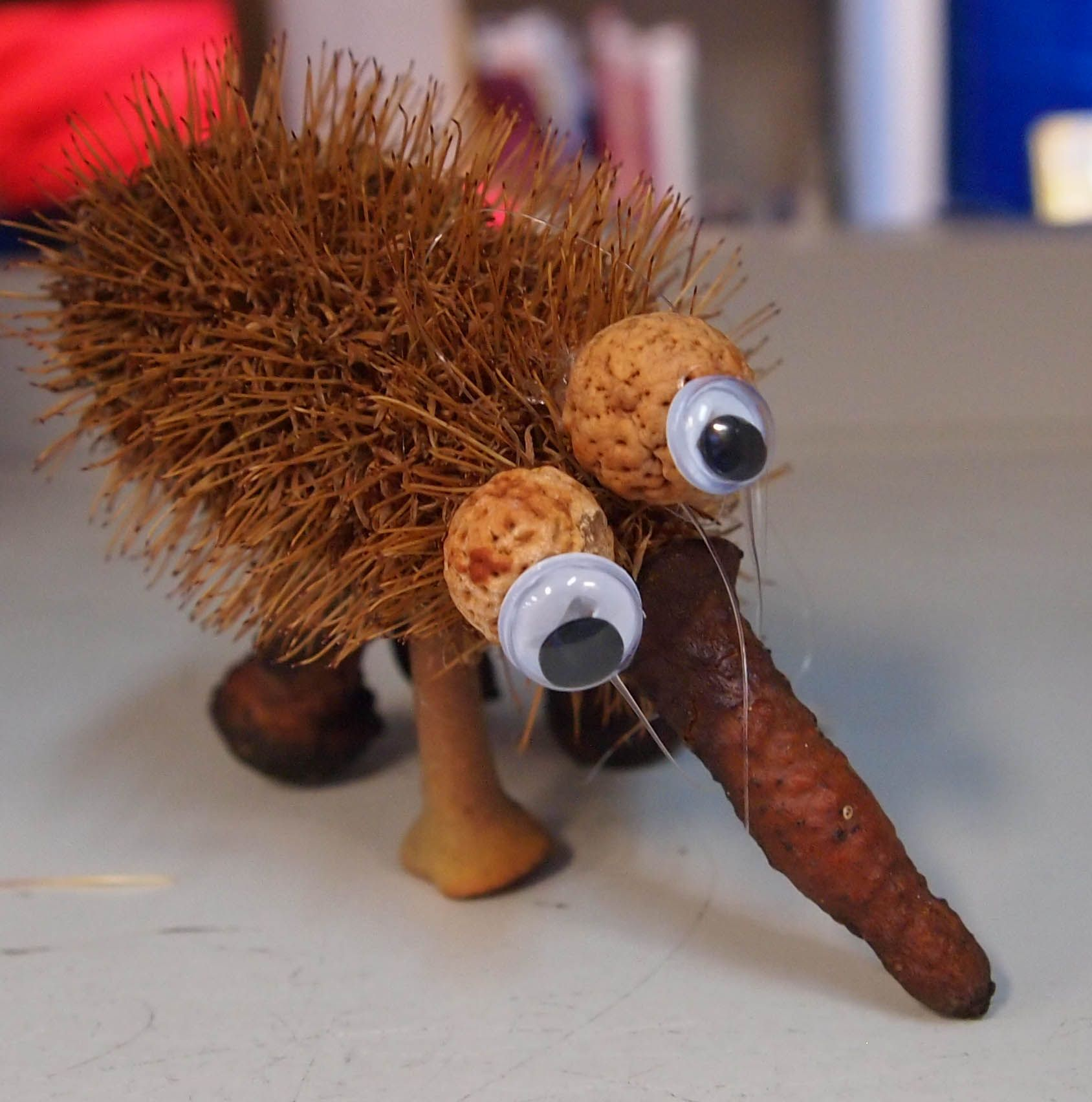 An Echidna Made With A Banksia Pod Body Quandong Seed
