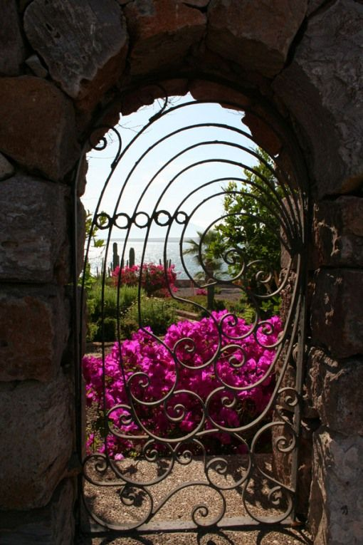 wrought iron in stone against fuchsia coloured flowers
