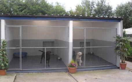Boarding Kennels Dog Boarding Kennels In Merthyr Tydfil South Wales Best Design 2015 Animal Coops Gall Dog Boarding Kennels Dog Kennel Outside Dog Enclosures