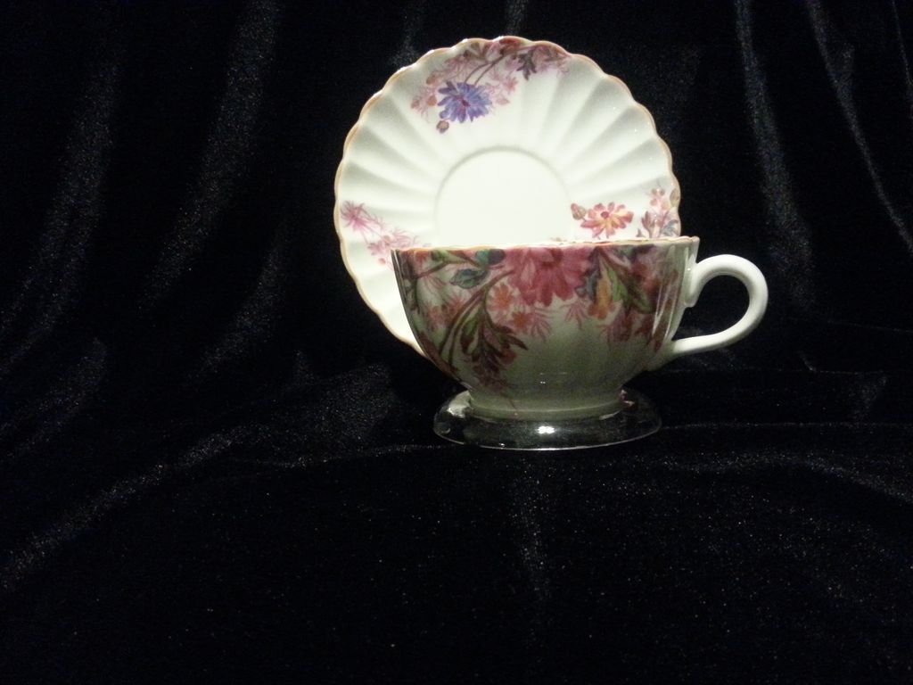 Spode Chelsea Garden Cup and Saucer Set