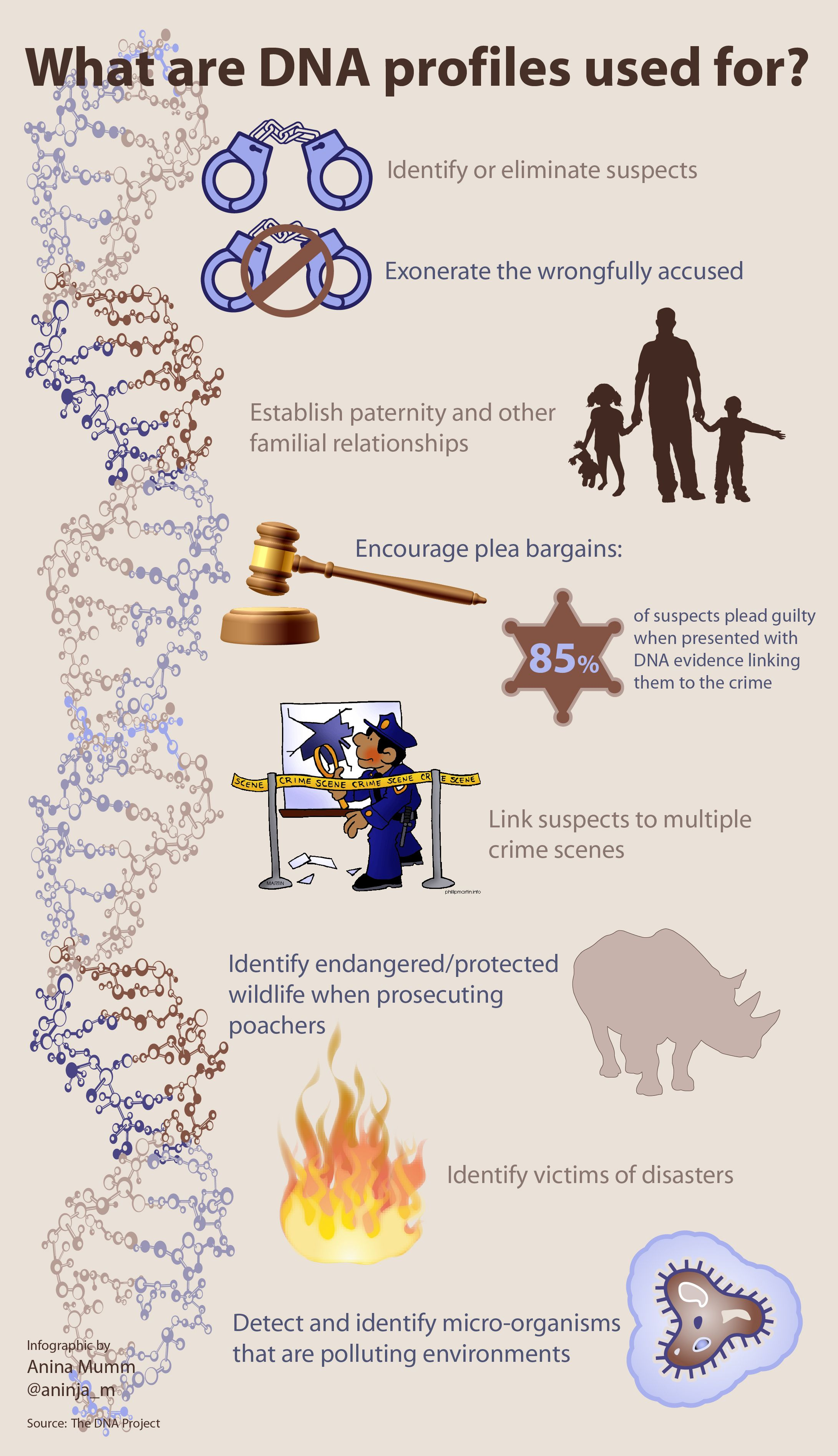 worksheet Dna Fingerprinting Worksheet infographic what dna profiles are used for info courtesy of the projects website