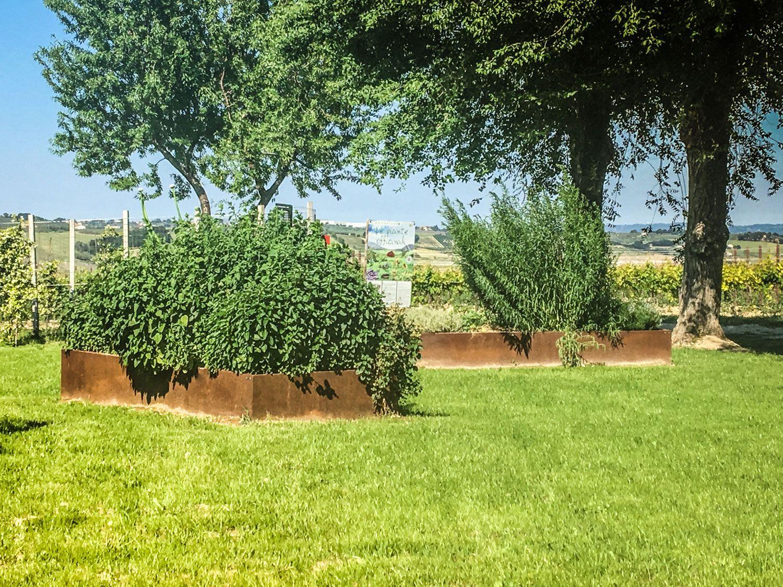 Piante Da Bordura Giardino un giardino sensoriale per grandi e piccini delimitato da