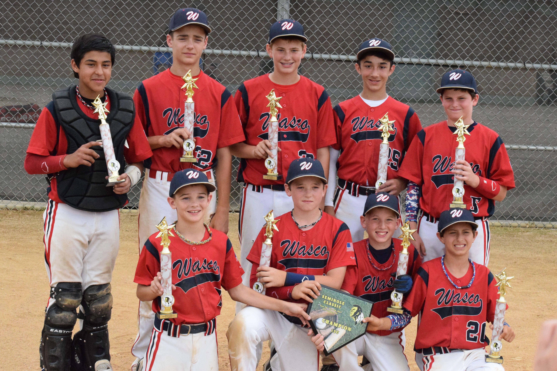 Warriors Travel Baseball Michigan In 2020 Travel Baseball Youth Baseball Warrior