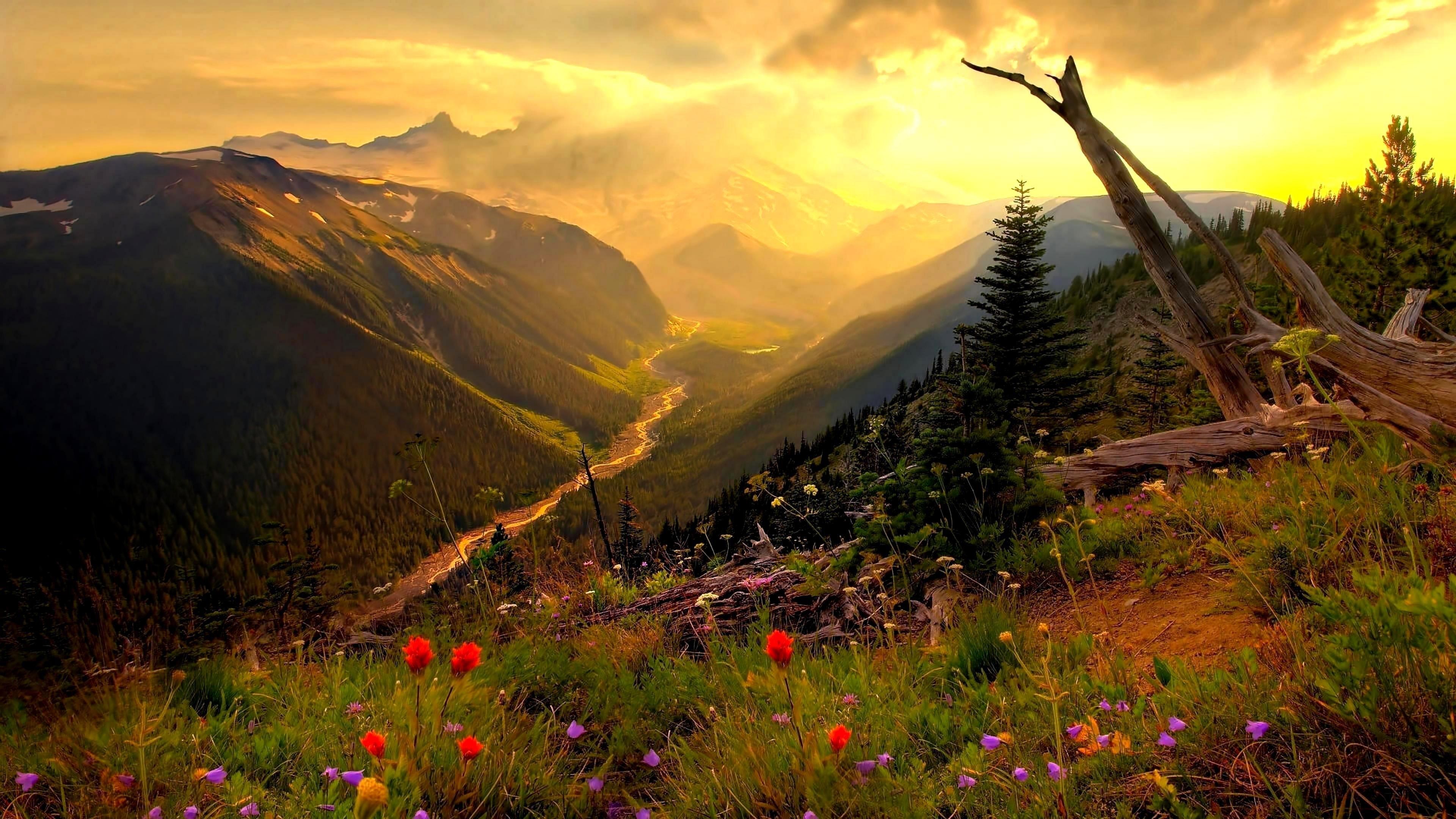 Amazing Nature Wallpapers For Whatapp Dp 4021753 Beautiful Nature Landscape Photography Scenery