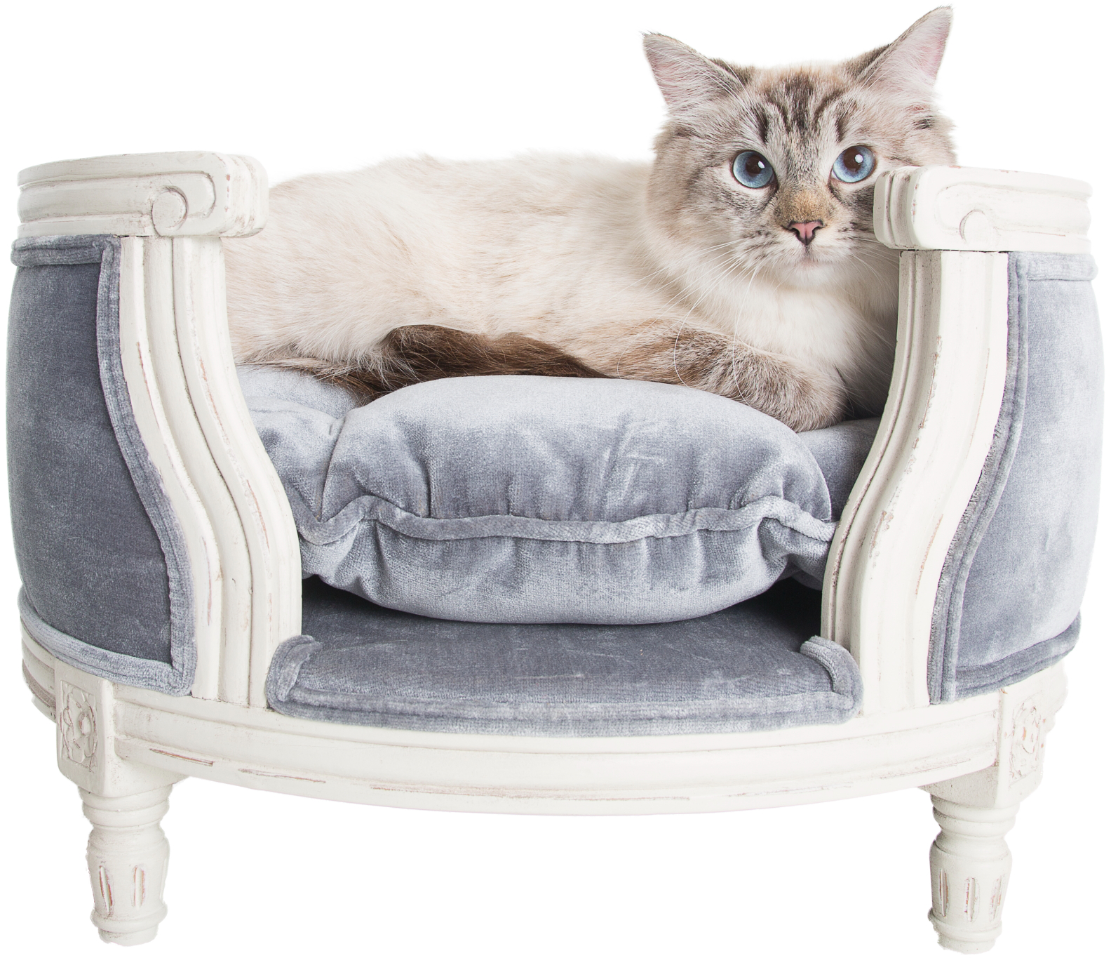 Lord Lou luxury cat sofa pile grey Pet furniture