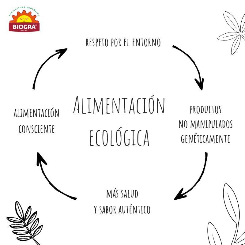 Es Sinonimo De Alimentacion Ecologica Saludable Y Sostenible