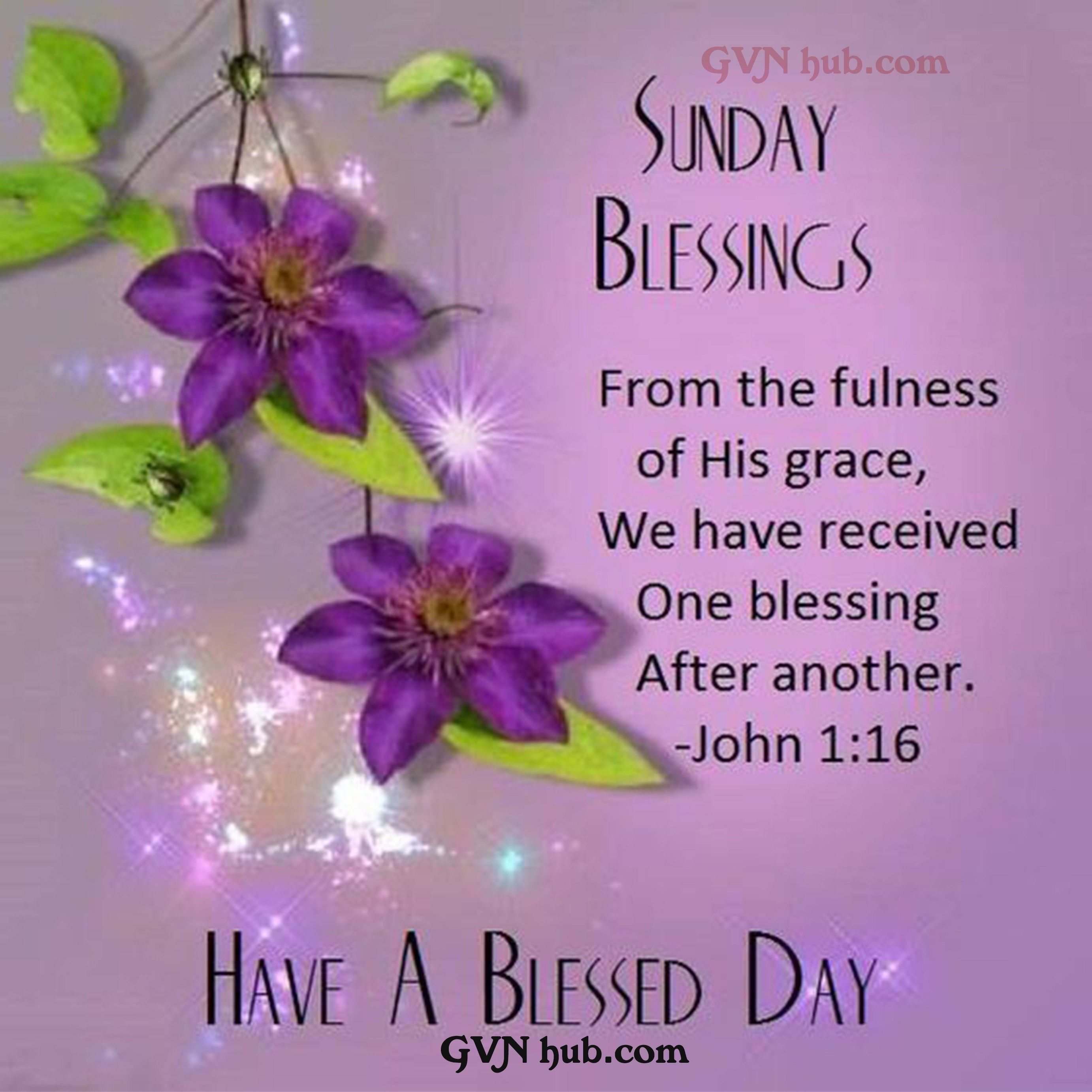 20 Best Quotes About Blessings   GVN Hub   Happy sunday quotes ...