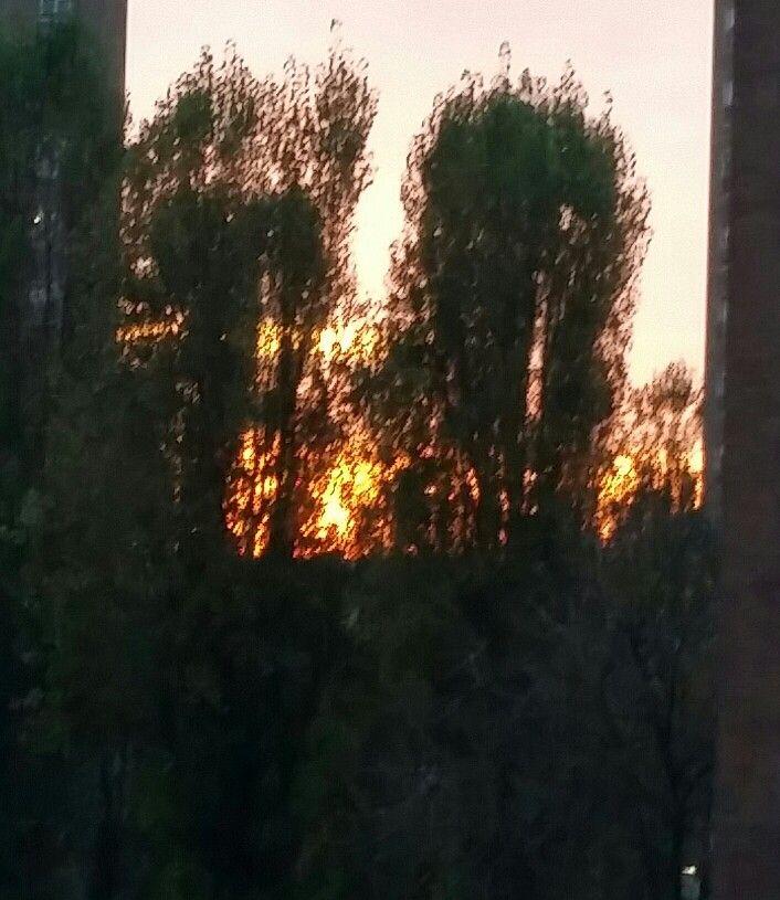 November sunset flames