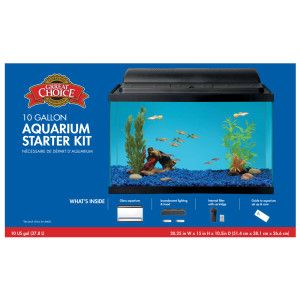 Grreat Choice 10 Gallon Aquarium Starter Kit Aquarium Petsmart Animal Room