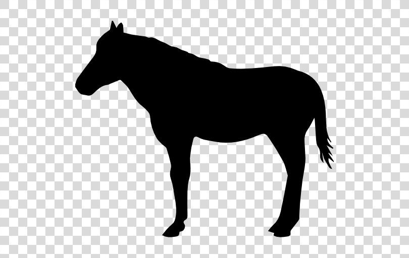 American Quarter Horse Silhouette Drawing Clip Art Standing Horse Png Horse Silhouette Silhouette Drawing American Quarter Horse