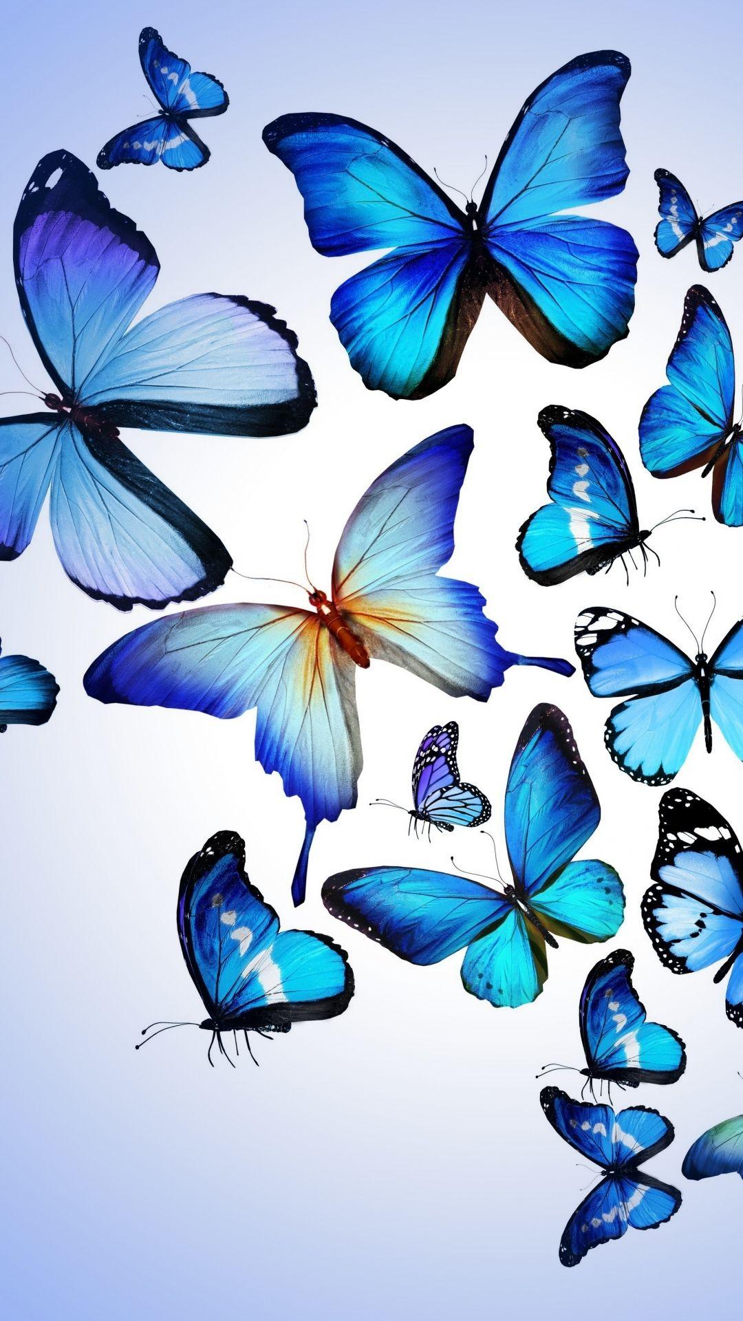 Download Premium Illustration Of Blue Butterflies Patterned On Black Blue Wallpaper Iphone Butterfly Wallpaper Iphone Black Phone Wallpaper