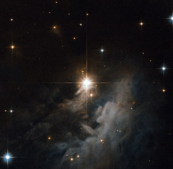IRAS 10082-5647, a young Herbig Ae/Be star
