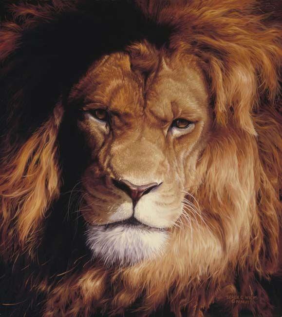 Derek Wicks Botswana King