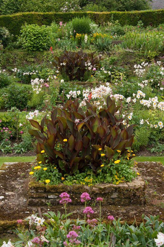 Rose Garden, Upton Grey | Gardening | Pinterest